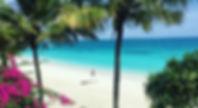Zuri_beach1.jpg
