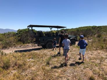 Grootbos- Südafrika
