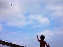Dort oben fliegt der Bruder...