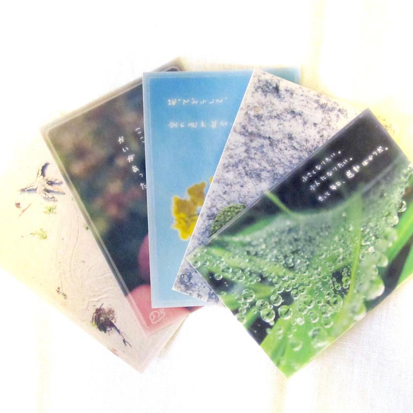 【展示参加】オリジナルポストカード展『+P13』