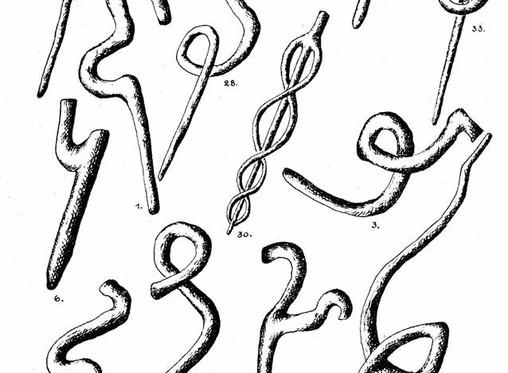 Krivulės - ypatingai senas mūsų kultūros reiškinys