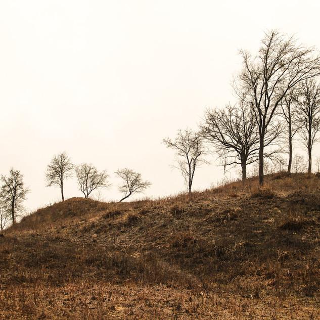 XIII a. Šventasis kraštovaizdis.Ekskursija automobiliais po Elektrėnų ir Kaišiadorių apylinkes
