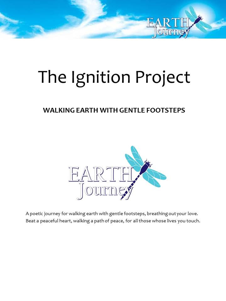 Ignition Project