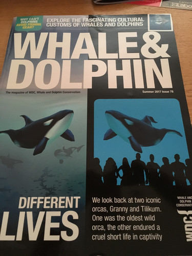 Whale & Dolphin Conservation