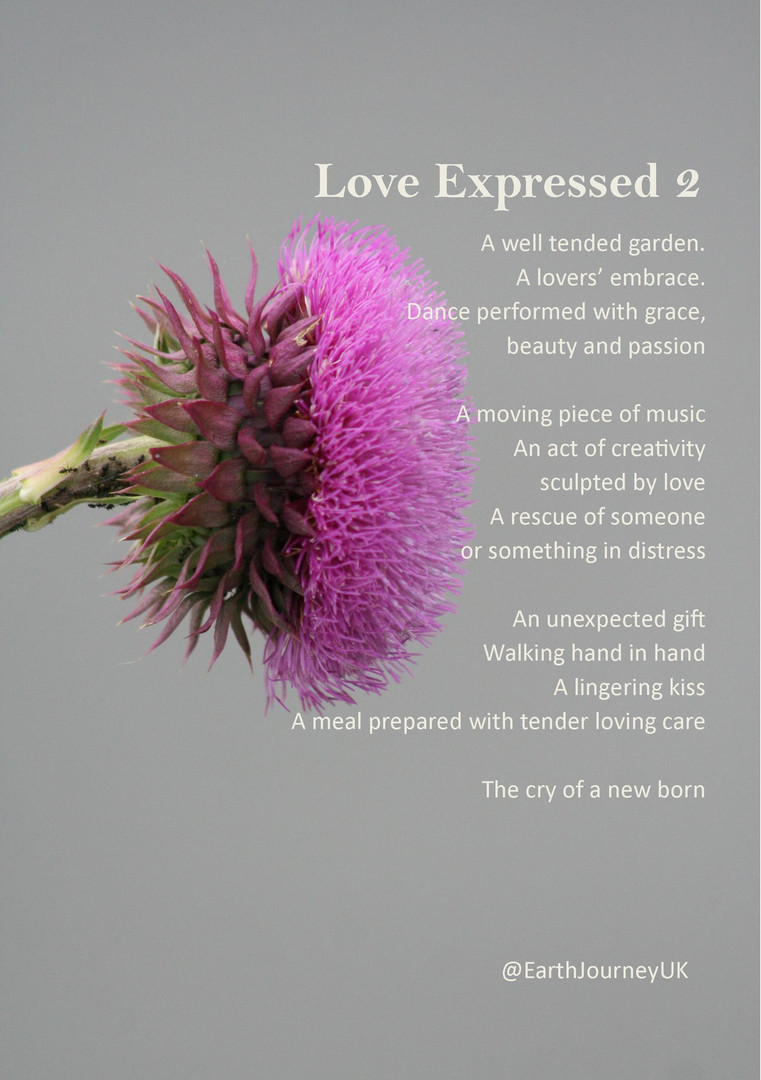 Love Expressed 2