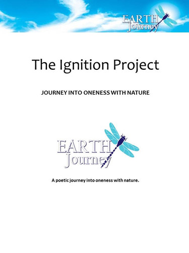 The Ignition Project