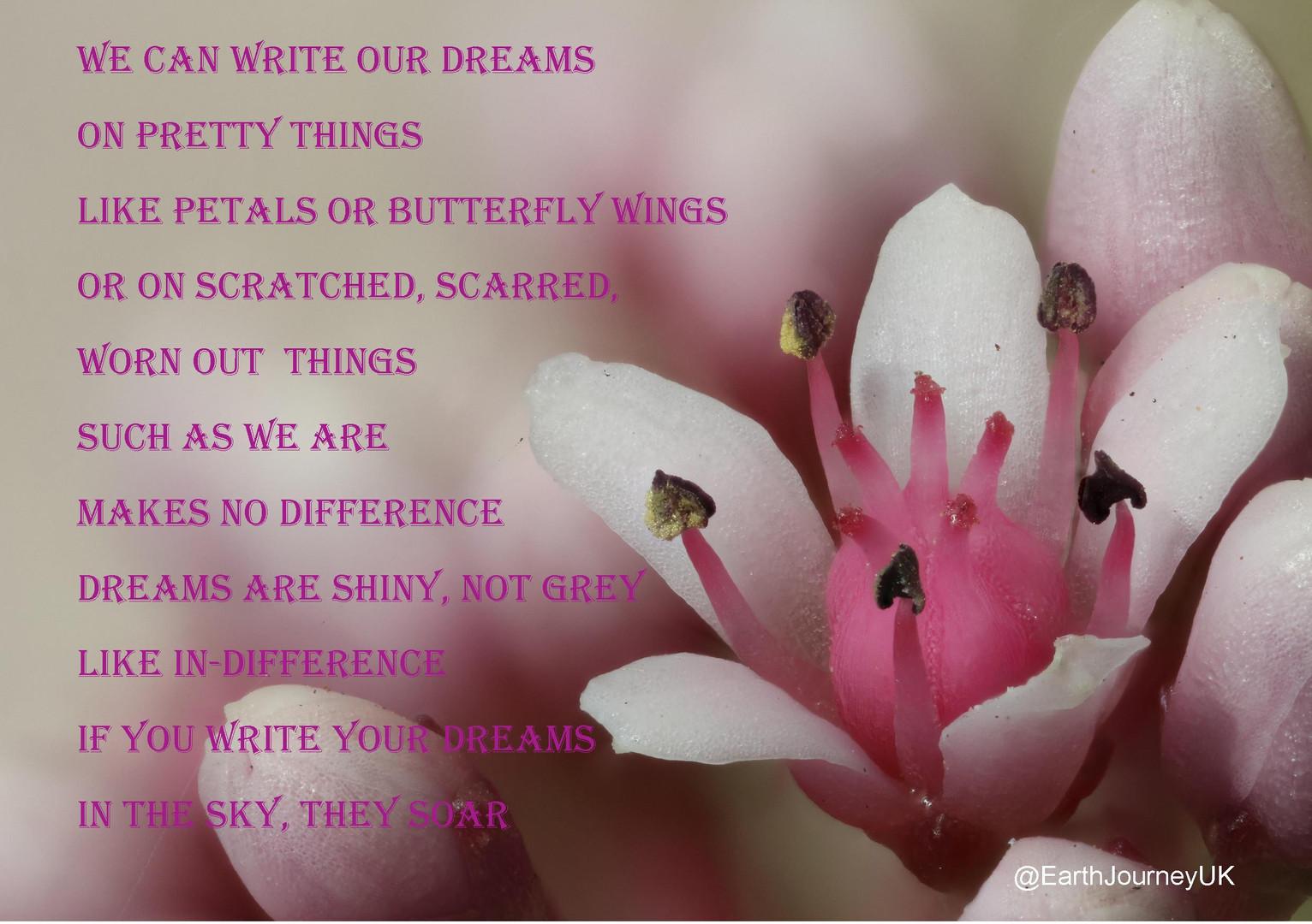 Write our Dreams