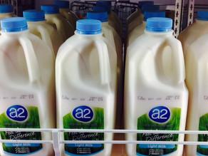 Designer milk – The A2 debate