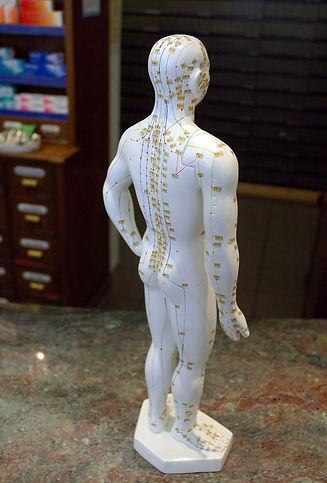 acupuncture-puppet-1326810-639x943RF.jpg