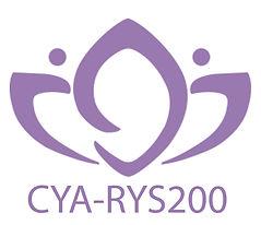 CYA-RYS200.jpg