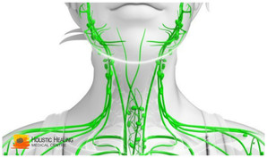 Lymph - pure water in our body