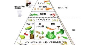 FREASH!サイエンス「地中海食事法」12ヶ月の実践がヘルシーエイジングにもたらした効果