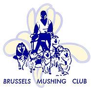 logo_brum2_281x271.jpg