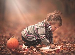 matte fall book.jpg