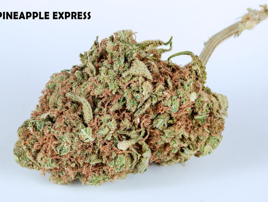 Weed Pineapple Express5.jpg