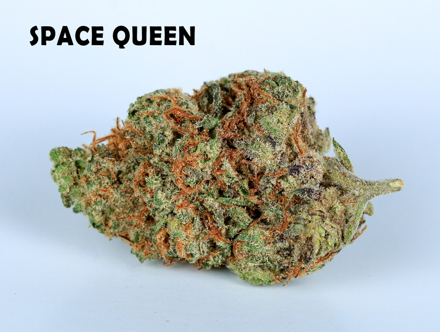 Weed Space Queen5.jpg