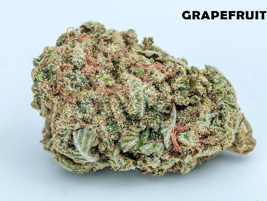 Weed Grapefruit5.jpg