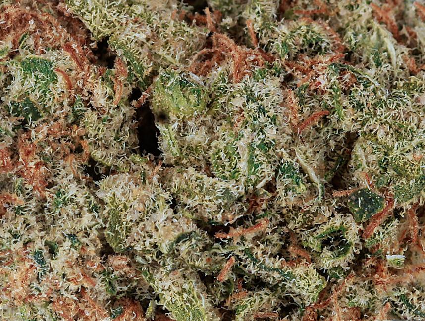 Weed Cookie Puss2.jpg