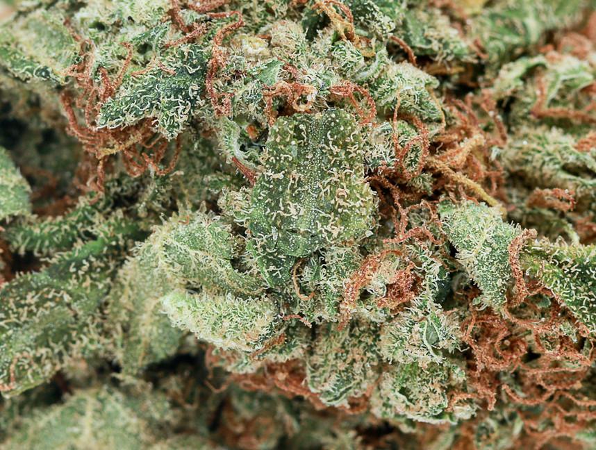 Weed Gorilla Glue2.jpg