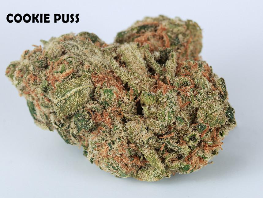 Weed Cookie Puss5.jpg