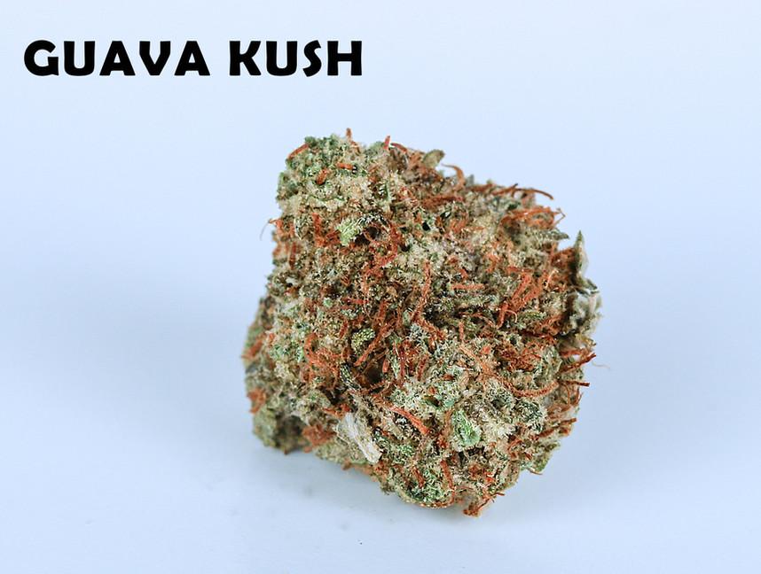 Weed Guava Kush5.jpg