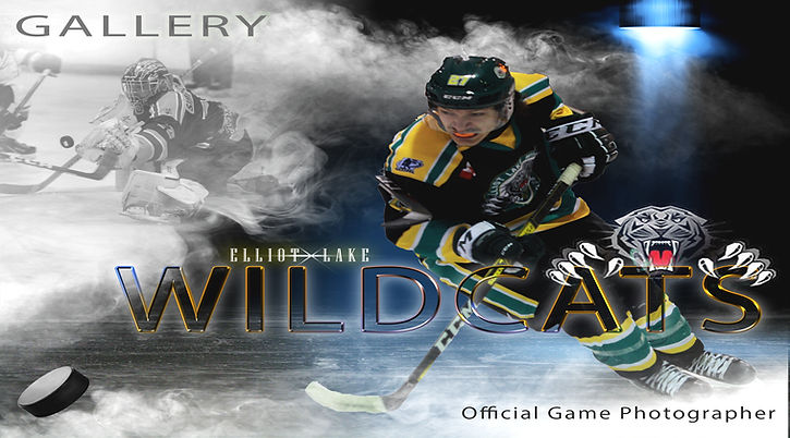 wildcats banner.jpg