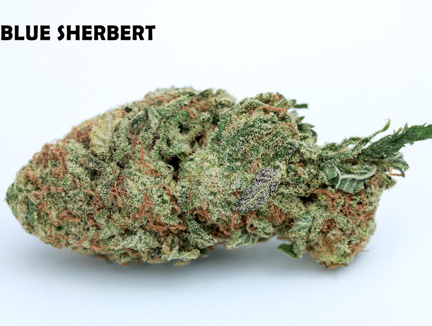 Weed Blue Sherbert5.jpg