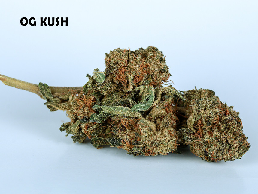 Weed OG Kush5.jpg