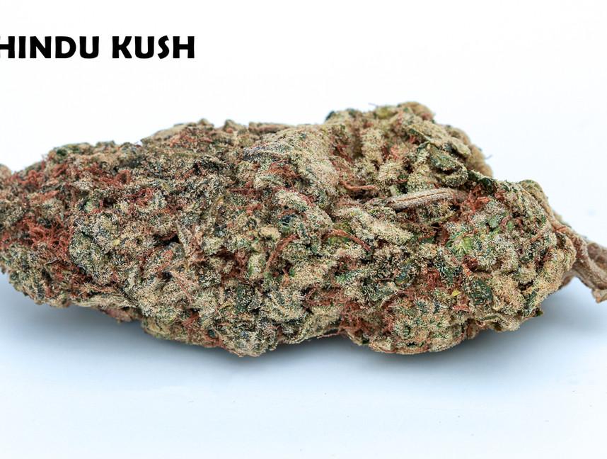 Weed Hindu Kush5.jpg
