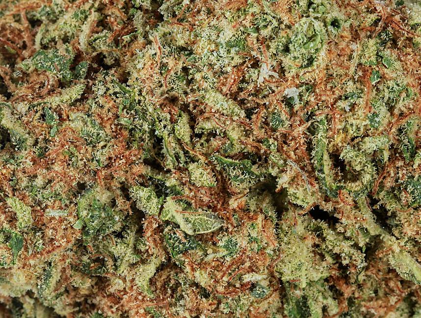 Weed Golden Cobra2.jpg