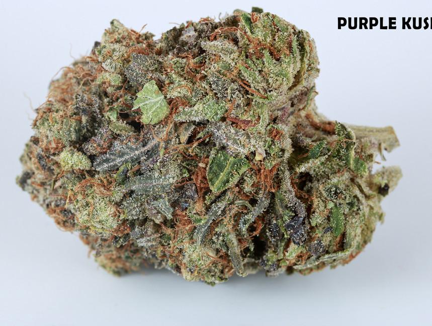 Weed Purple Kush5.jpg
