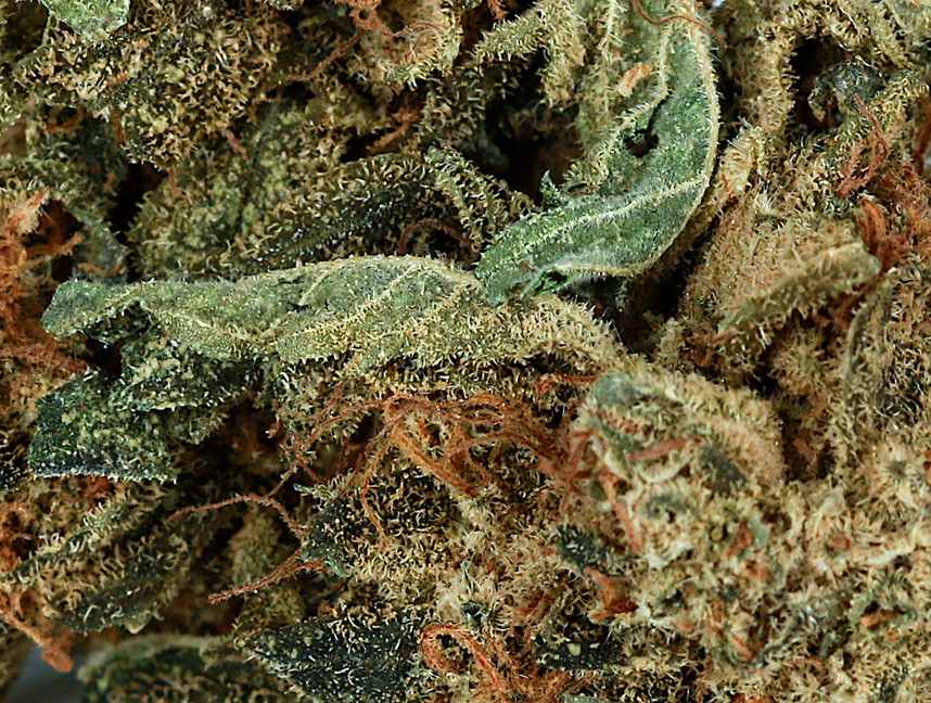 Weed OG Kush2.jpg