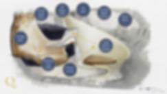 Qbrio_Vision.png