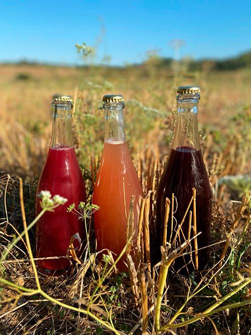 naturalwine_vino natural