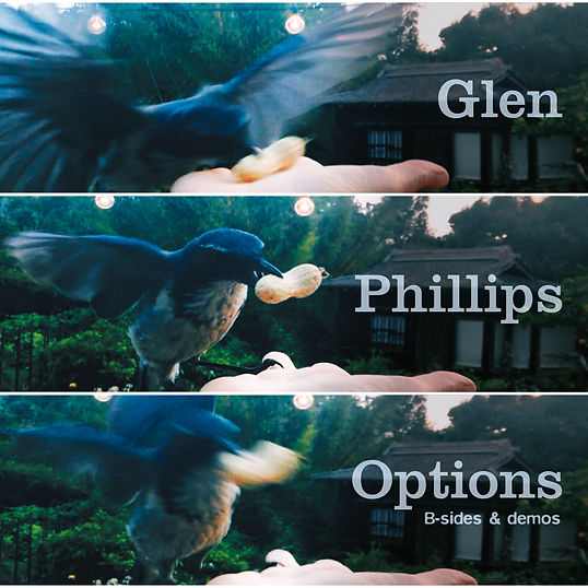 Glen Phillips _Options_ Cover.jpg