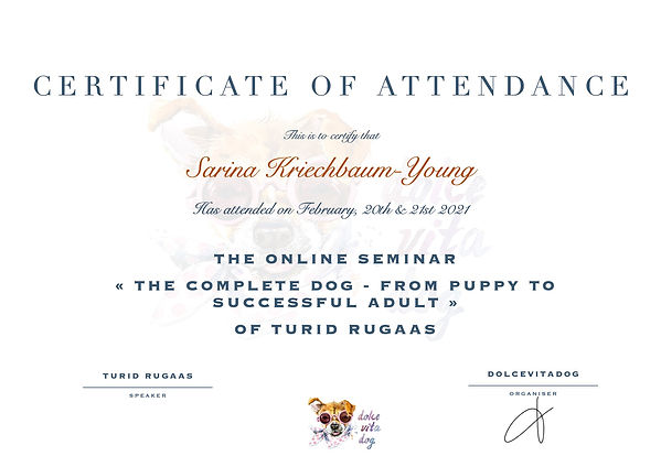 Certificate of Attendance The Complete D