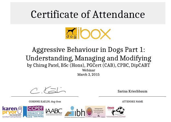 Aggressive Behavior in Dogs.jpeg
