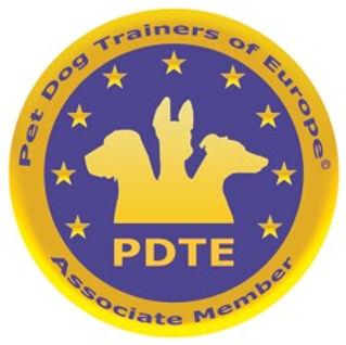 PDTE Logo 2014 AM CMYK.jpeg