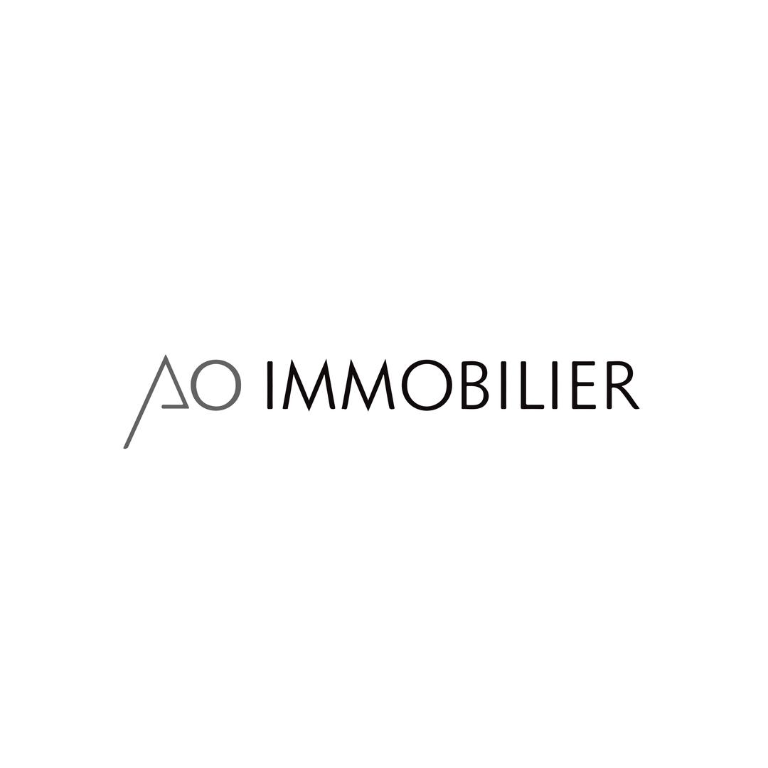AO Immobilier