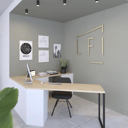 LFI, Design Elémentaire