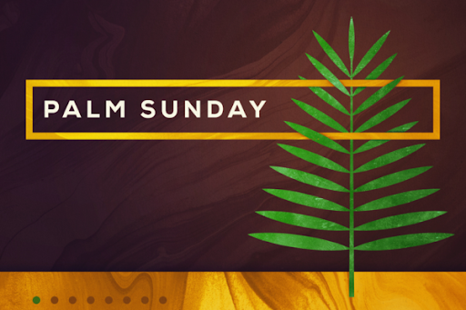 Palm Sunday 3.png