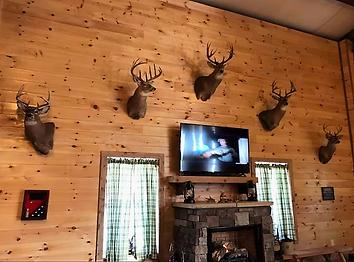 Lodge N Wall.png