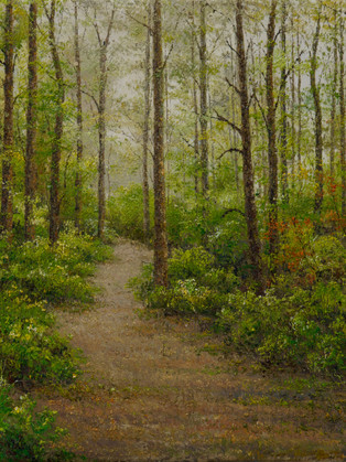 Reflecting Trail