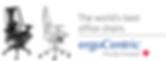ergoCentric logo.png