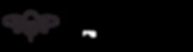 Busy Bree Logo Dark.png