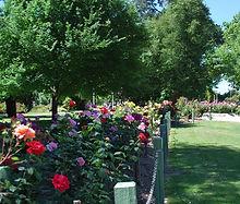 Benalla Botanical Gardens