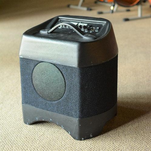 Acoustic Image 310 BA, Series I