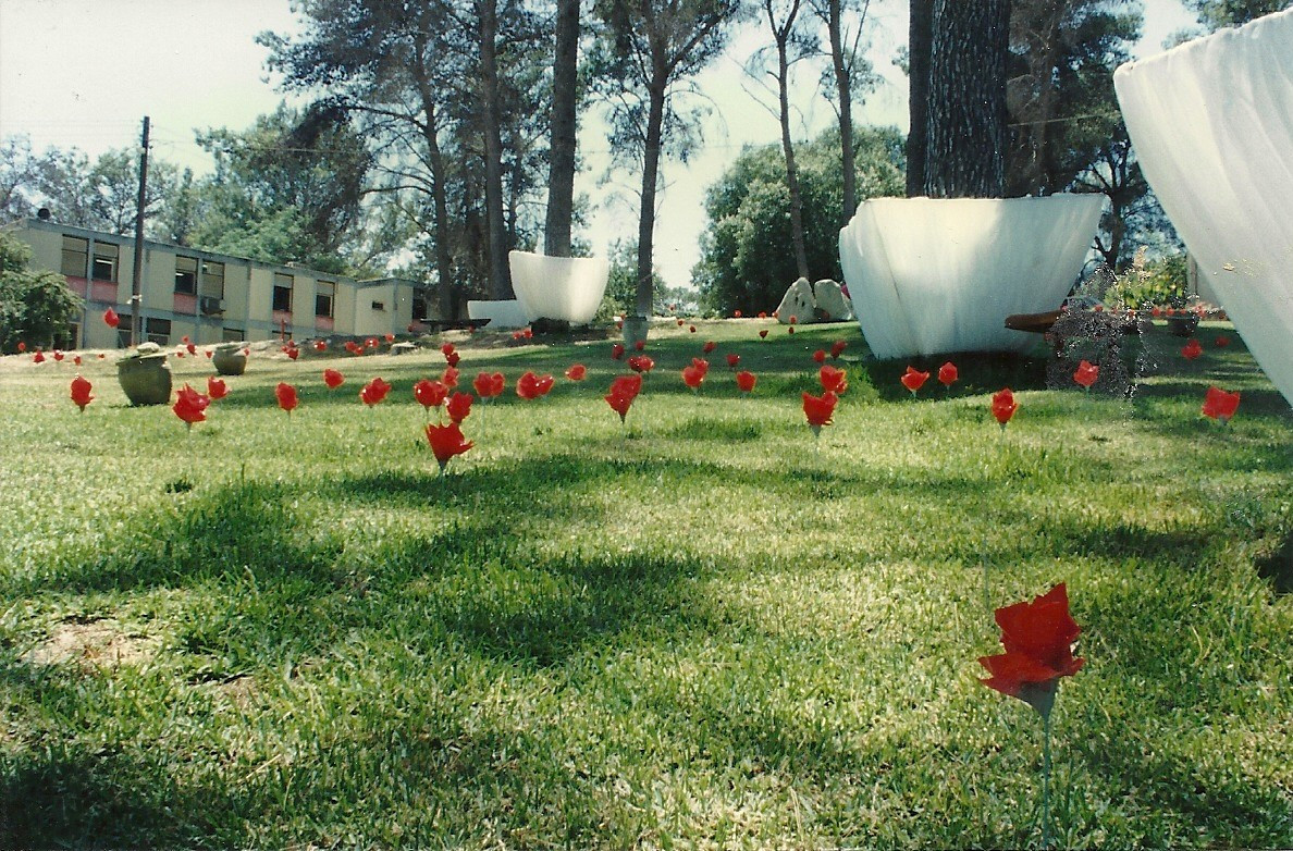 The reserve, plastic sheets, artificial flowers, pottery jug, grass mats