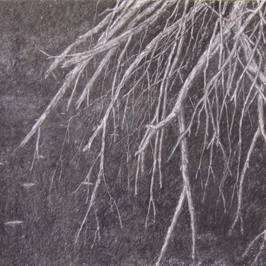 Trees in the darkness, charcoal on canvas, 90/70 cm, 2016