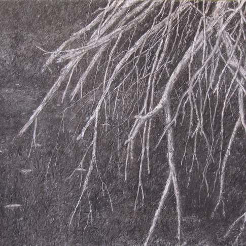 Trees in thedarkness,charcoal on canvas, 90/70 cm, 2016